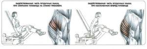 разведение-ног-на-тренажере-при-наклоне-вперед