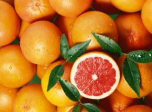 greypfrut_chudo-frukt